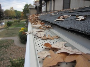 Knoxville Gutter Protection / Leaf Relief 9