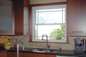 Knoxville Single Hung Windows 3